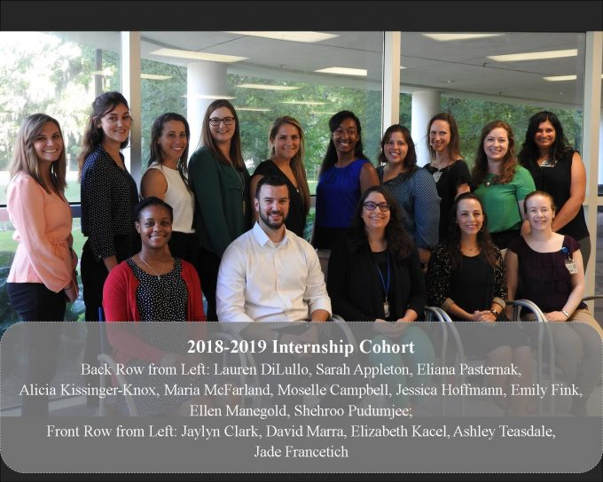 2018-2019 Intern Cohort