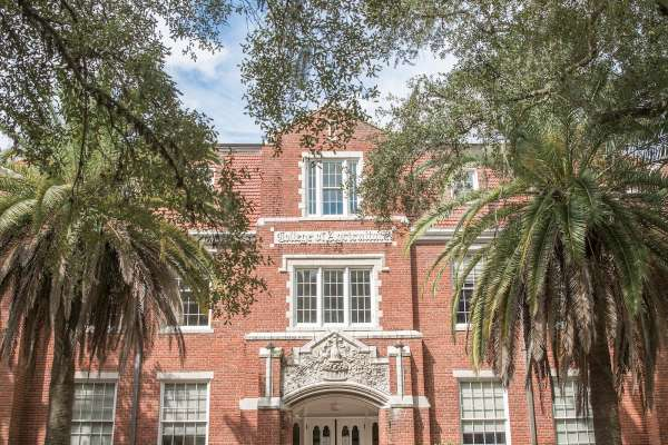 Building at UF